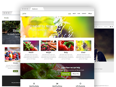 A selection of easy–to–re–design website templates